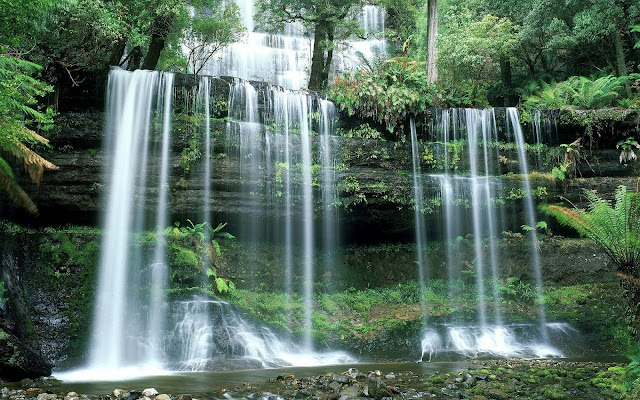 tasmania, national park, falls wallpaper