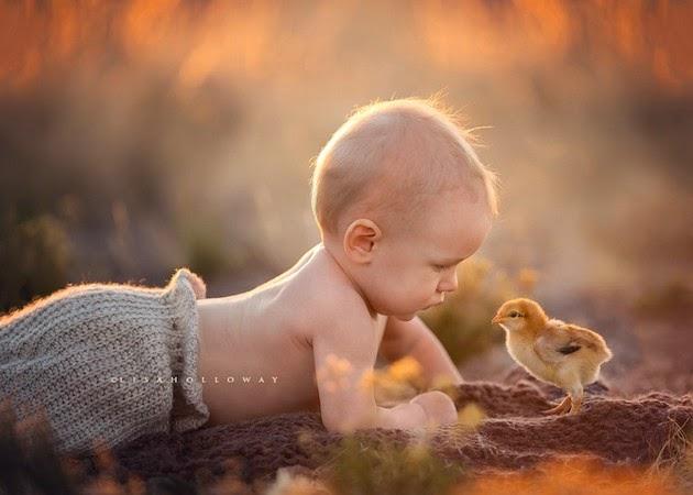 family photographer Lisa Holloway