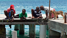 Karibia 2010-2011