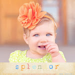 Splendor Photography