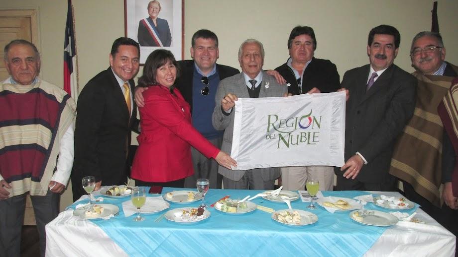 Concejo Municipal San Carlos celebra firma de proyecto Ñuble Región por la P. Bachelet en Chillán