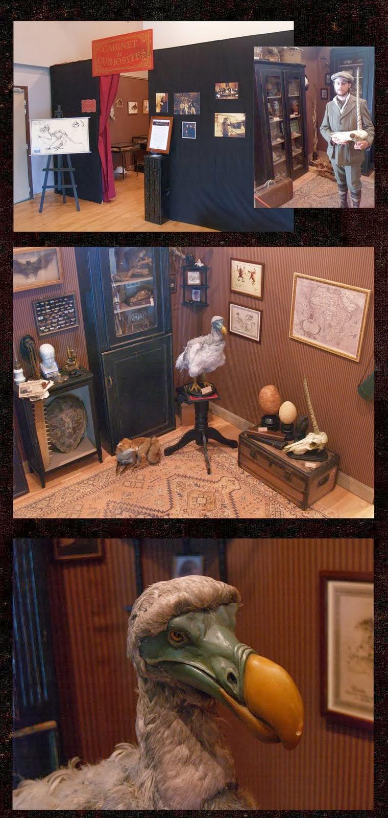 mon cabinet de curiosit s par camille renversade l 39 exposition cabinet de curiosit s. Black Bedroom Furniture Sets. Home Design Ideas