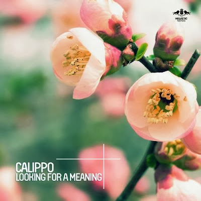 Calippo – Looking For a Meaning
