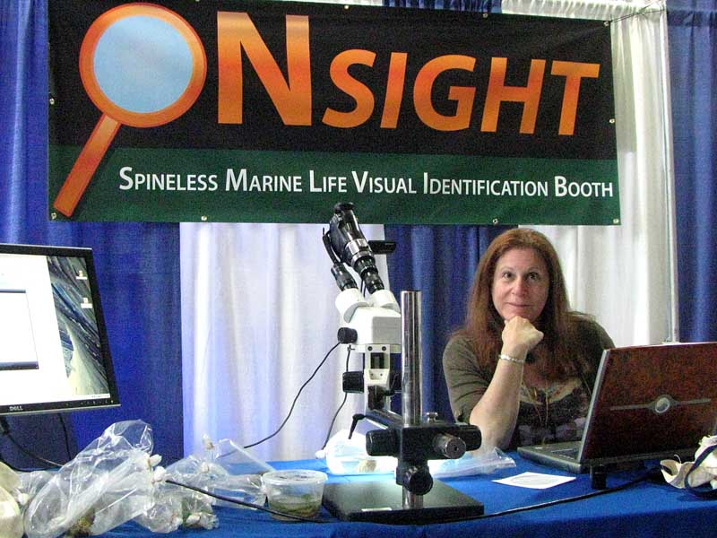 Leslie Harris at BAYMAC at the Spineless Marine Life Visual Identification Booth