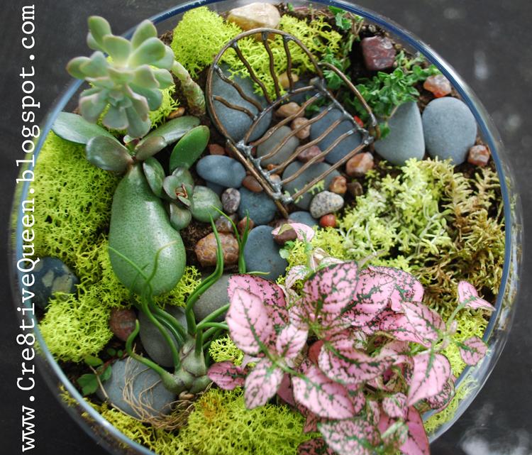 Fairy Garden Plants Lookup Beforebuying