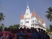 mikavu 2010