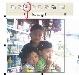 sehingga hasinya 5 cara memotong foto menggunakan crop tool caranya