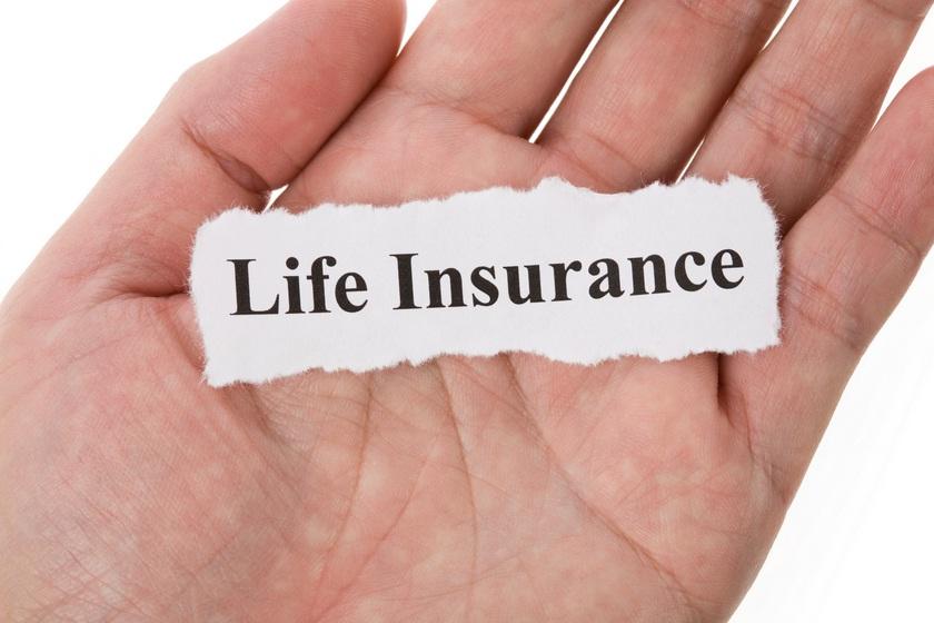 Life Insurance Adalah