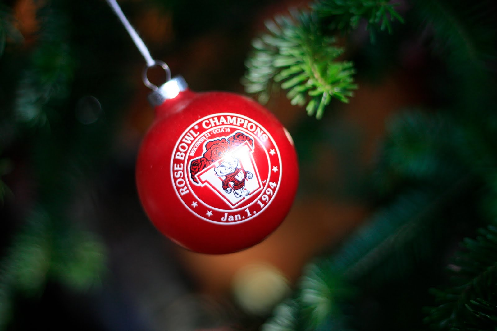 Raising cubs in a campground 25 days of christmas ornaments day eleven - Great christmas ornaments that you need for your home ...
