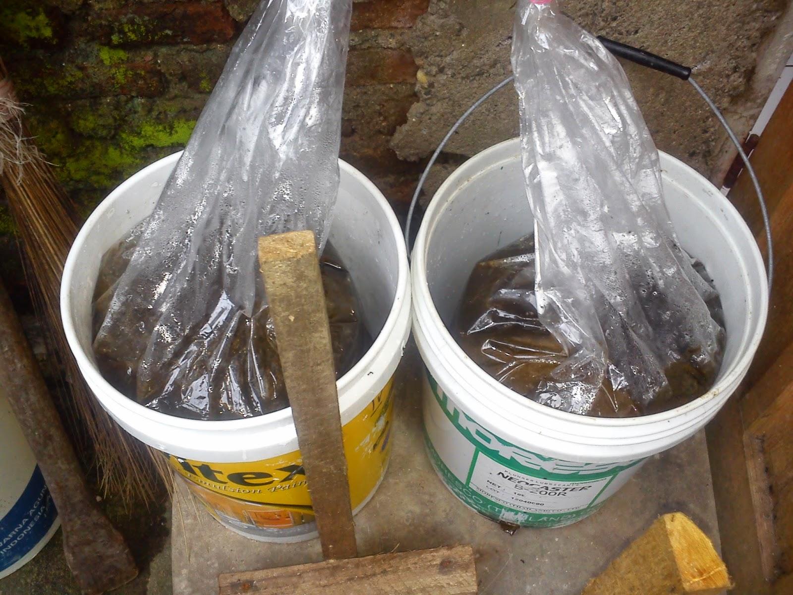 Bagaimana Cara Mengatasi Bau Sampah?