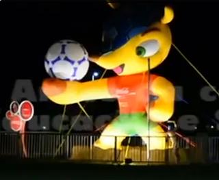 Vídeo mostra tatu-bola sendo esfaqueado em Brasília