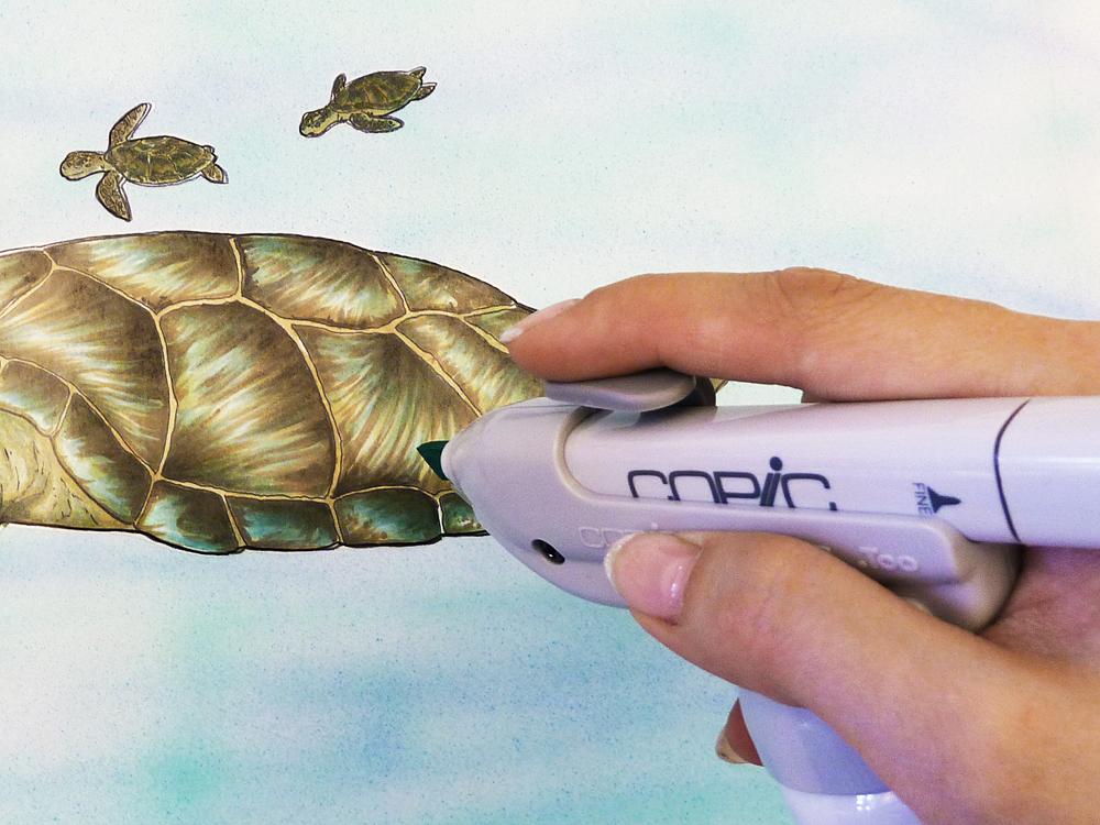 copic friends schweiz tutorial meeresschildkröte