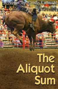 The Aliquot Sum - a novel written for the New Adult genre