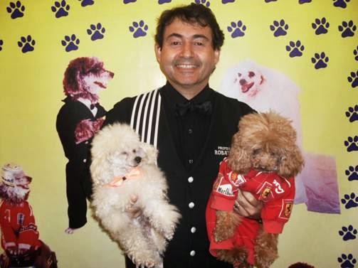 Bangu Shopping apresenta o 'Show dos poodles adestrados'