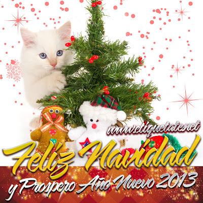 Selección especial de Imágenes Navideñas de Gatos junto al Arbol para Facebook