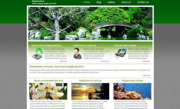 Grey Green Nature CSS Website Template