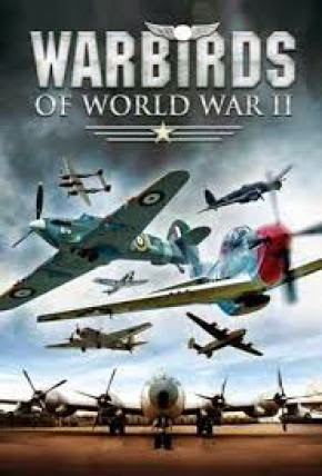 WarBirds World War II Combat Aviation - PC