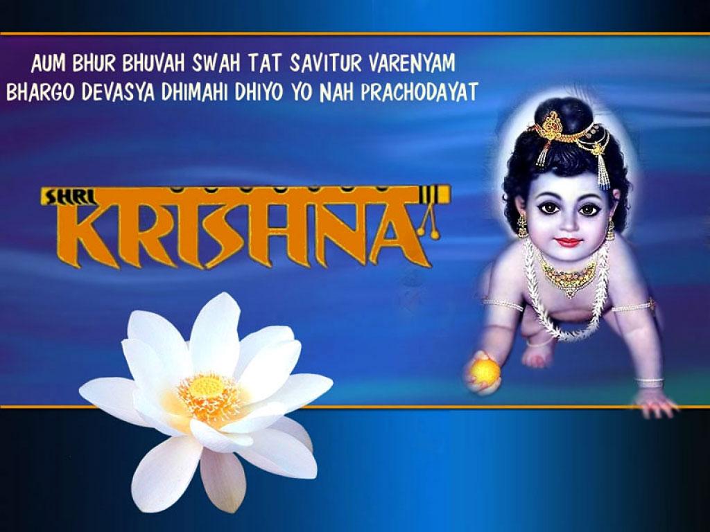 Lord shree bal krishna wallpaper beautiful hd wallpaper - Shri Bal Krishna Wallpaper