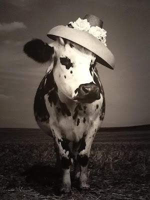 This Model Really Is A Heifer Jean Baptiste Mondino S Cow