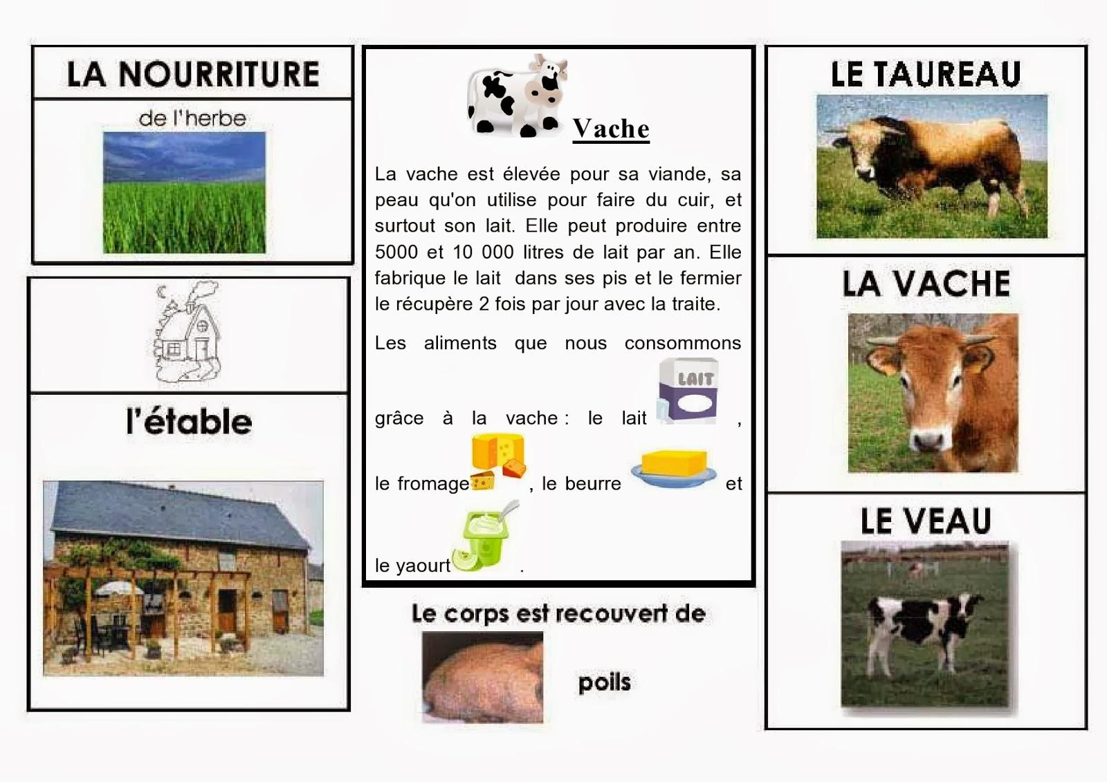 Célèbre S'épanouir pour bien grandir: Les animaux de la ferme JA68