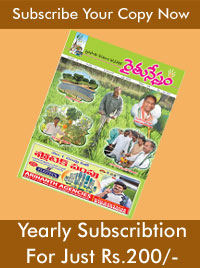 Subscribe to agriculture magazine