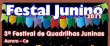 VENHA PARA O FESTAL JUNINO 2011
