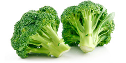 Vegetable : Broccoli