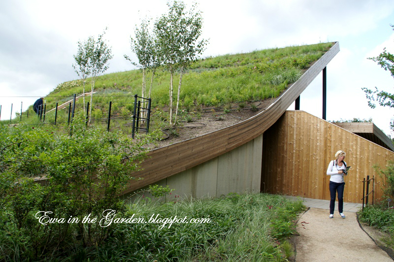 Ewa In The Garden 8 Photos Of Most Impressive Green Roof