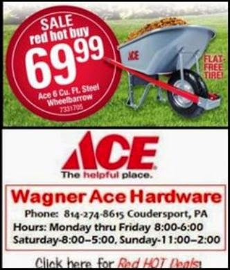 Wagner ACE Red Hot Buys