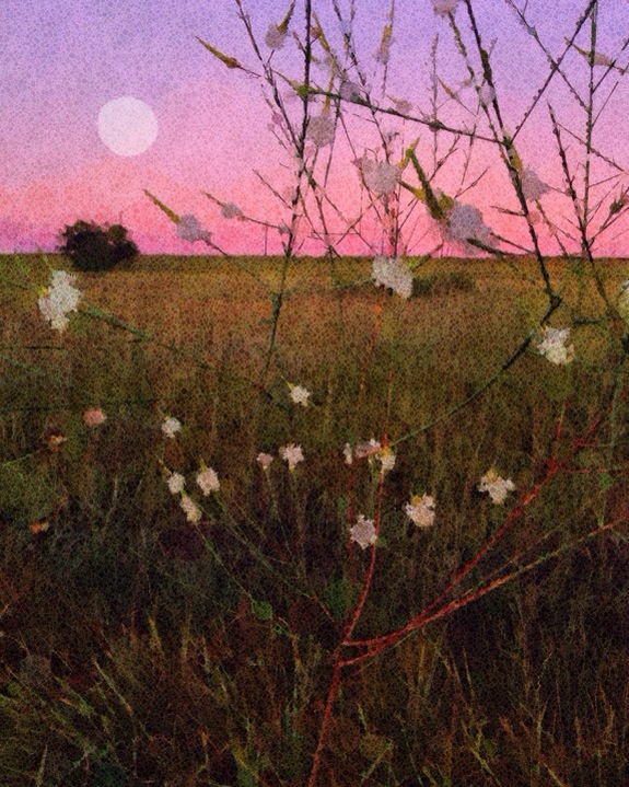 Moonrise at My Hill © Lorna Morris Hamblin