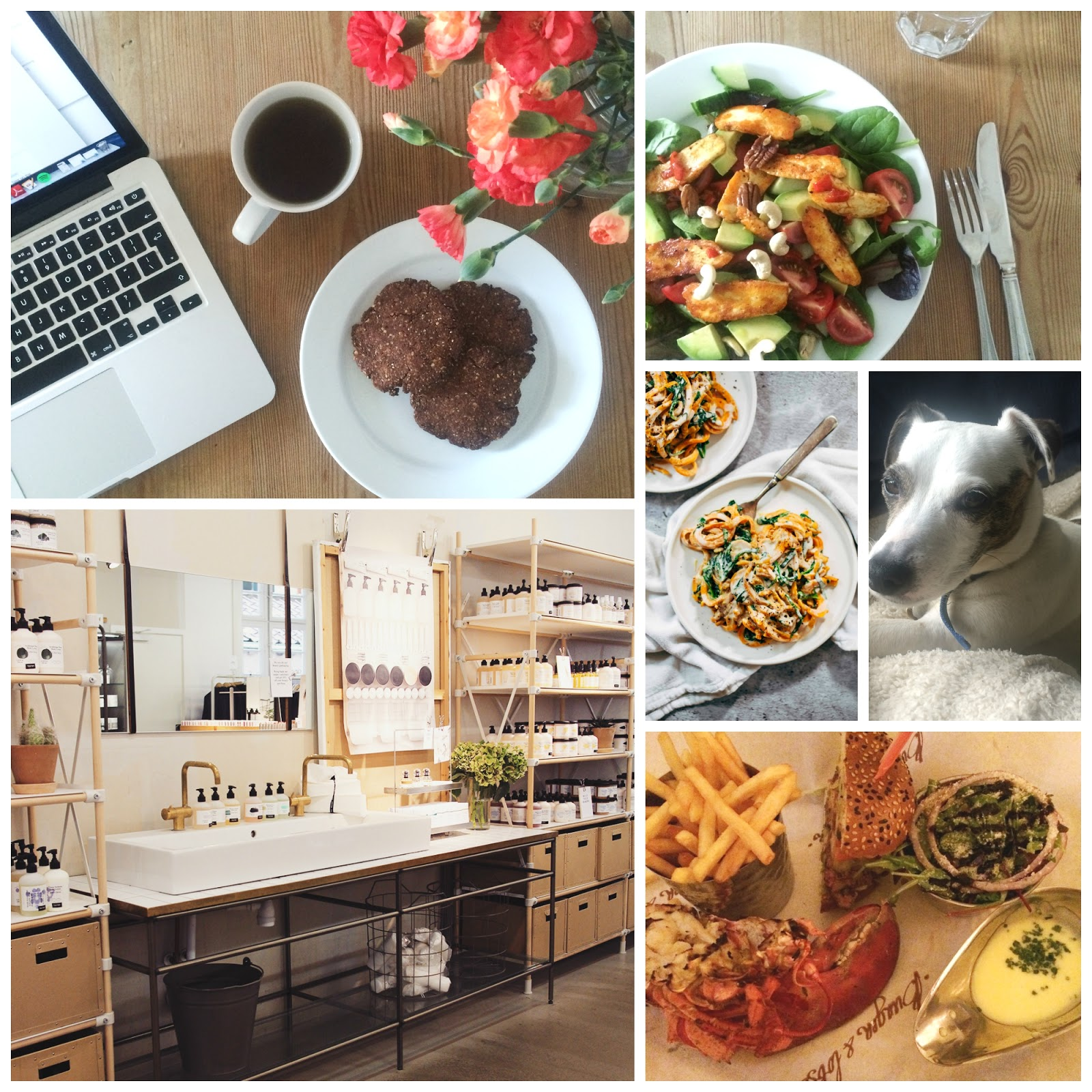 She's So Lucy #9 Weekly Loves Swaghetti Deliciously Ella Chocolate Chia Cookies