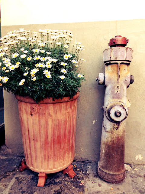 fire hydrant and flower pot