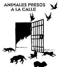 Frente de Liberacion Animal  !!