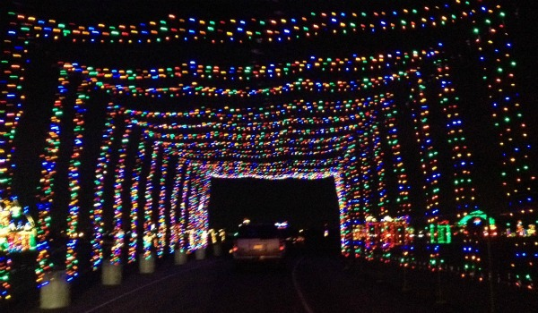 Get out about for the week of november 19 2012 oh so for Gift of lights texas motor speedway
