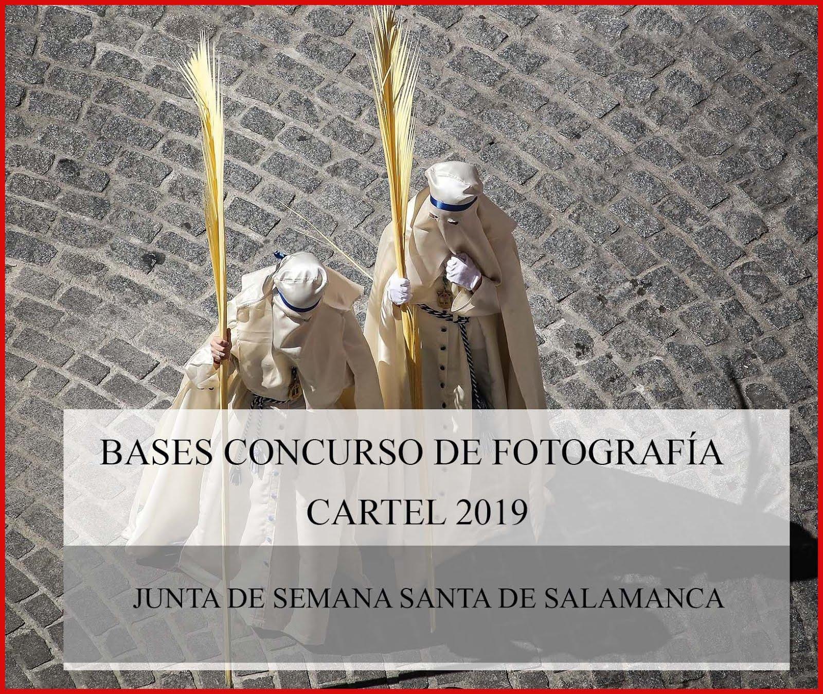 BASES CONCURSO DE FOTOGRAFÍA CARTTEL DE LA SEMANA SANTA DEL AÑO 2019