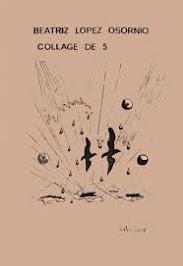 COLLAGE DE 5
