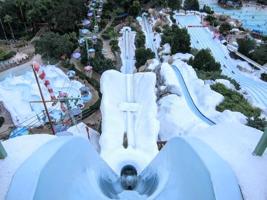 10 Datos Interesantes De Parques Acuaticos En Disney World