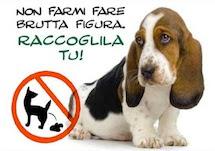 Non è colpa dei cani... ma degli umani