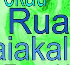 Room 10 Ruapotaka class blog