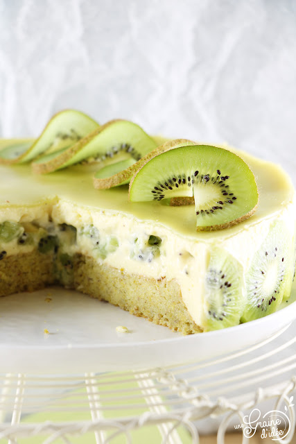 Kiwiier Fraisier Pâtisserie Kiwi Gâteau Hiver