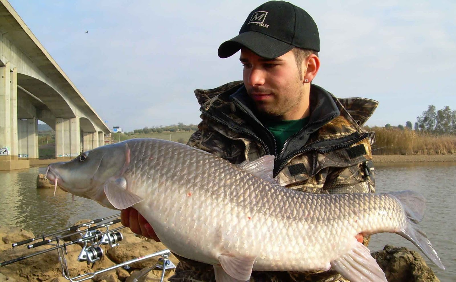 Barbel Fishes World Hd Images Free Photos 10 Kg Facts