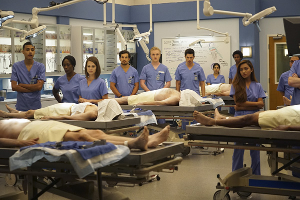 Grey´s-Anatomy-Nueva-Temporada