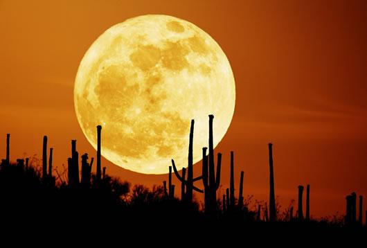 De las lunas, la de octubre es mas hermosa