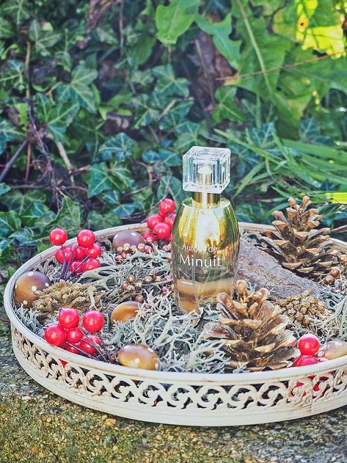 Dr Pierre Ricaud, meilleur parfum, 2015, eau de parfum, noel, parfum de l'année, exotique, autour de minuit