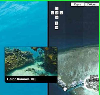 В Интернете будет доступен подводный мир Большого Барьерного рифа