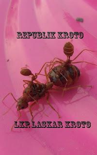 """<img src=""""LKP.Laskar Kroto.jpg"""" alt=""""LKP.Laskar Kroto Lamongan"""">"""