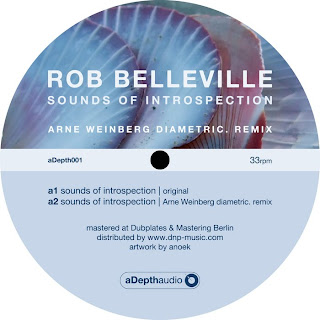 Rob Belleville :: Sounds Of Introspection