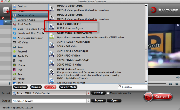 mts to mp4 converter torrent