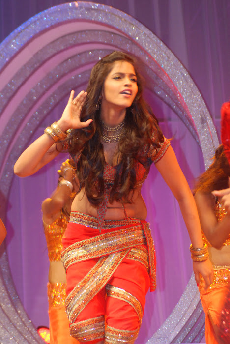 dhansika performance at big salute to women entertainers awards latest photos