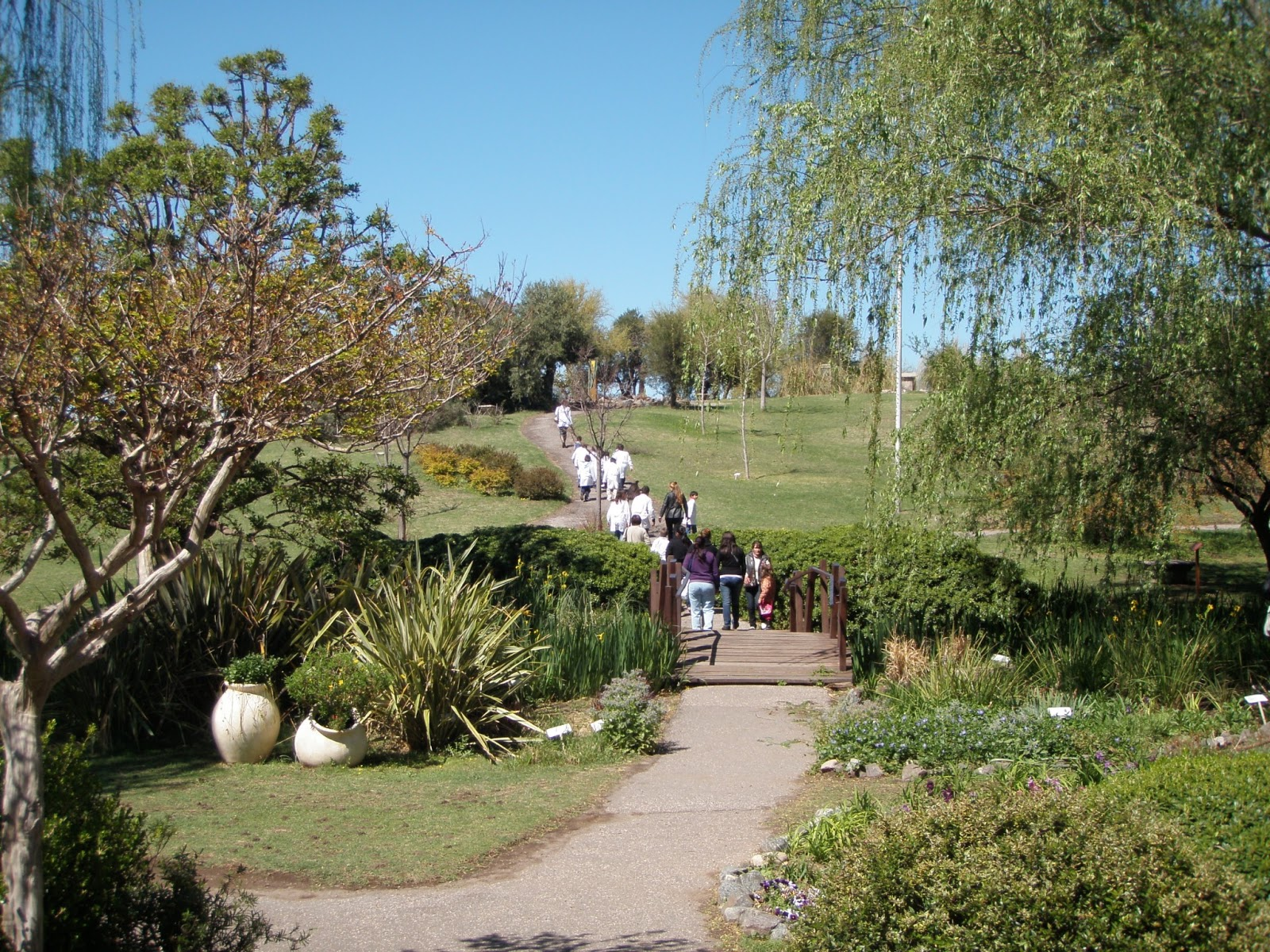 Jard n bot nico de c rdoba en abril capacitaci n docente for Jardin botanico cursos